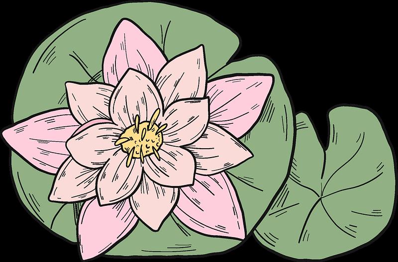 Lotus clipart transparent background 2