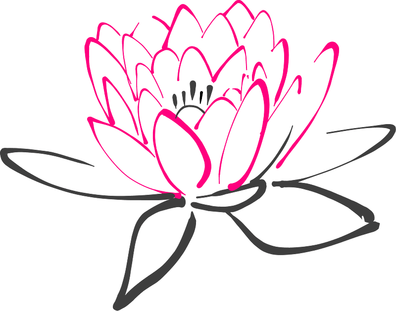 Lotus clipart transparent background 4