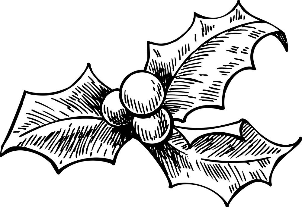 Mistletoe Clipart Black and White free