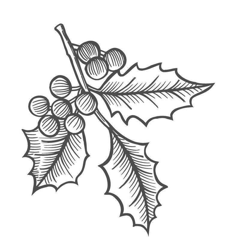Mistletoe Clipart Black and White images