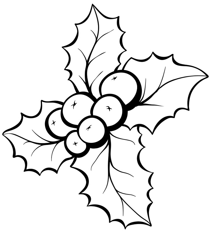 Mistletoe Clipart Black and White png image