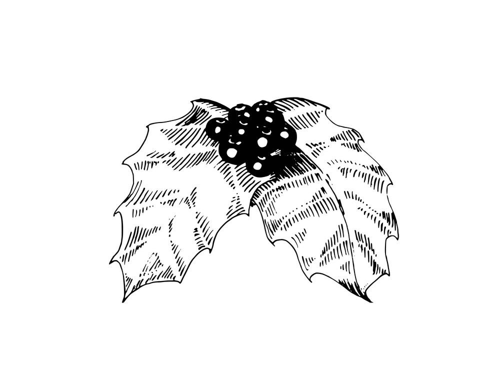Mistletoe Clipart Black and White