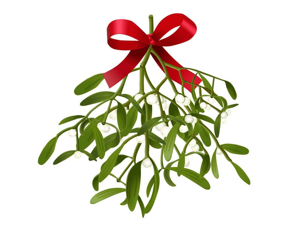 Mistletoe clipart 1