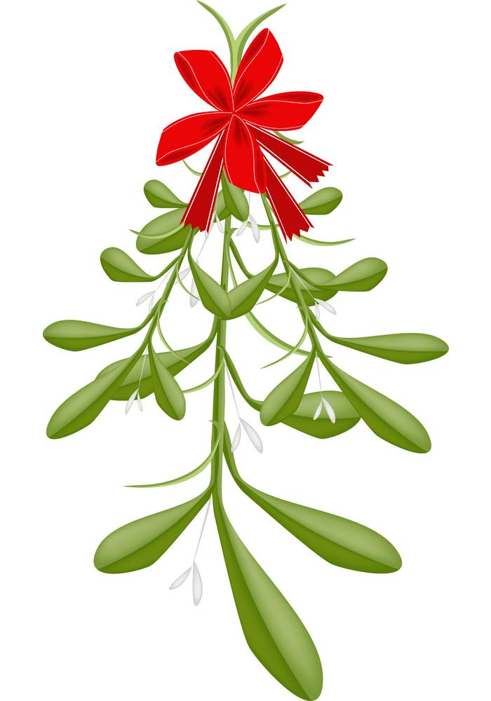 Mistletoe clipart 2