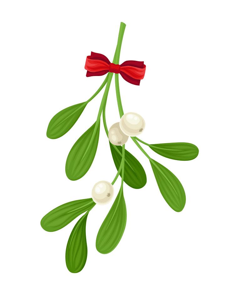 Mistletoe clipart 6