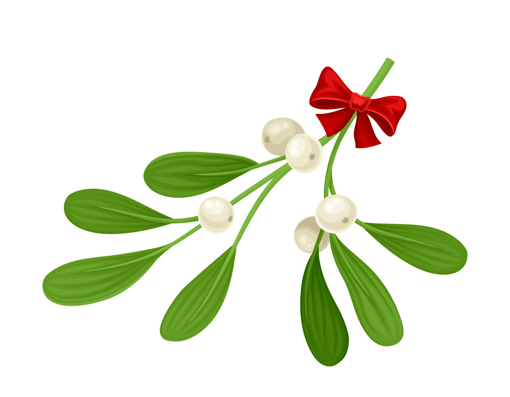 Mistletoe clipart 9