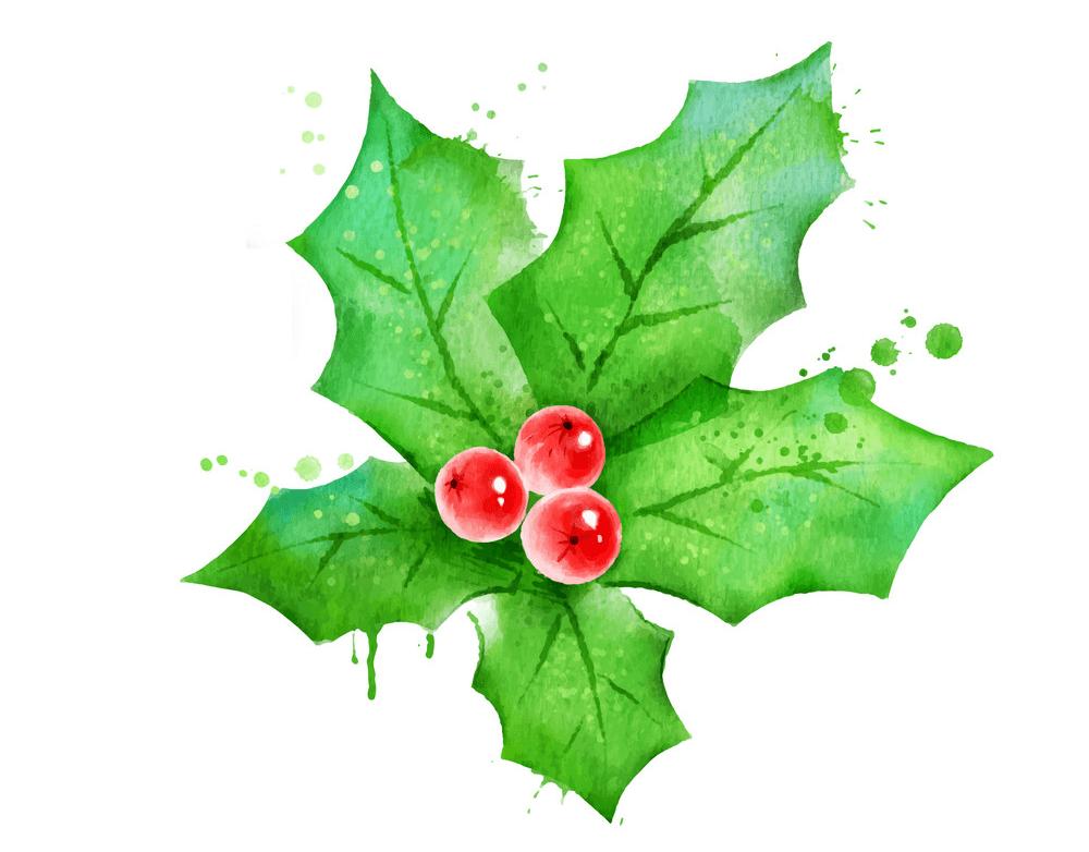 Mistletoe clipart free image