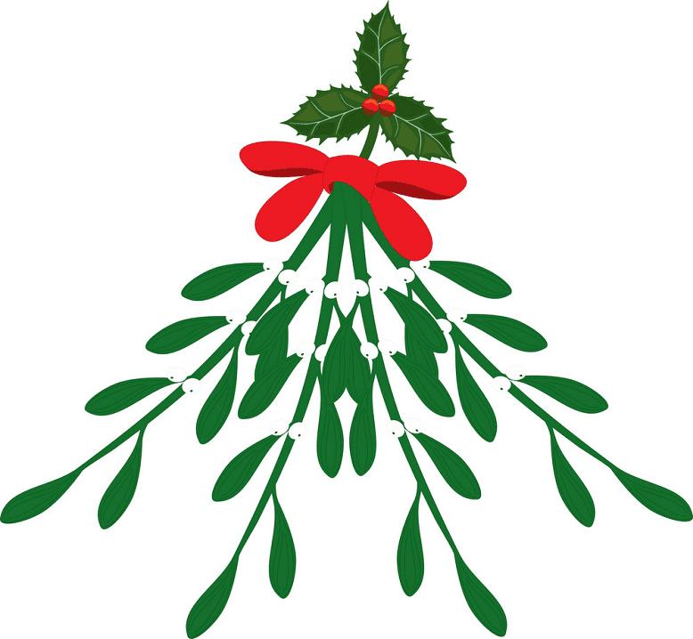 Mistletoe clipart image