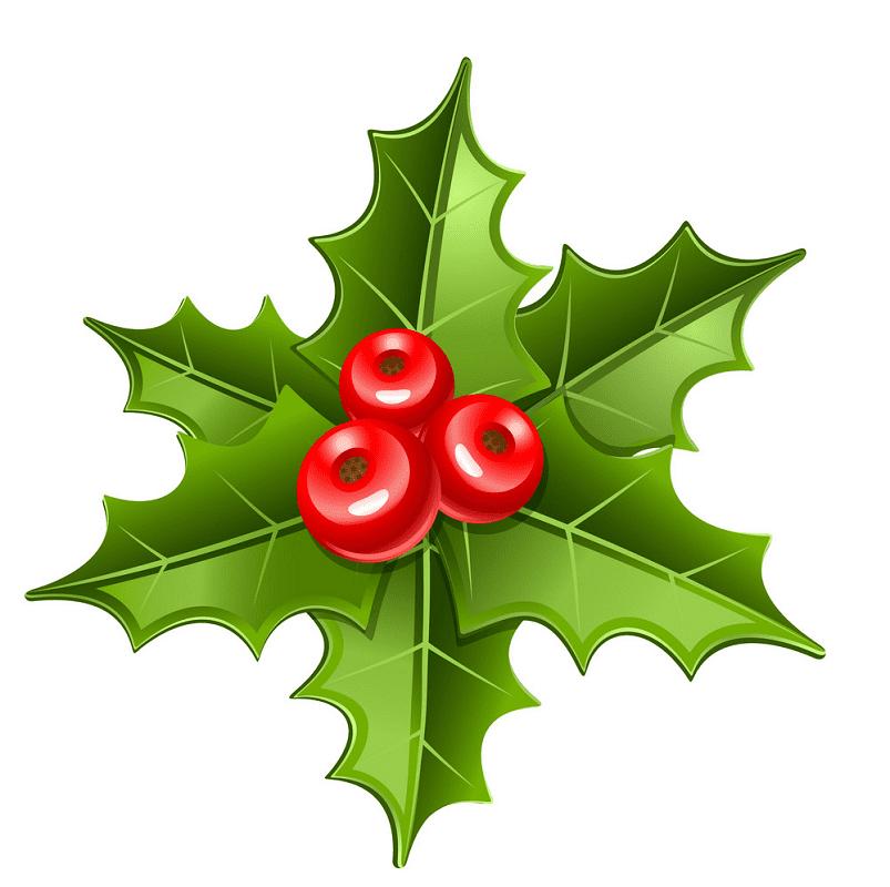 Mistletoe clipart png download