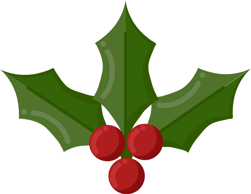 Mistletoe clipart transparent 2