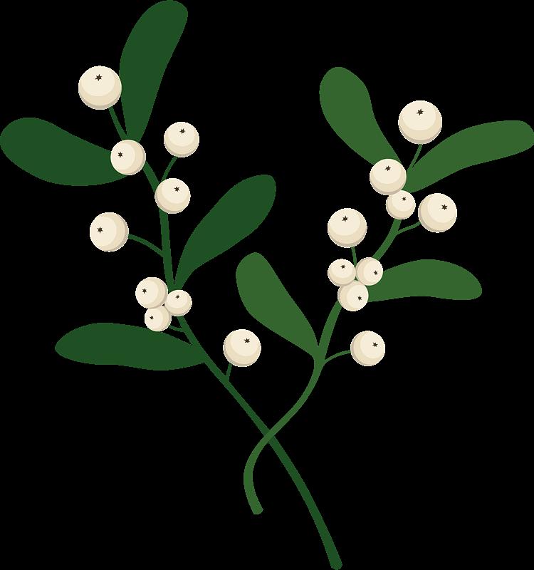Mistletoe clipart transparent 3