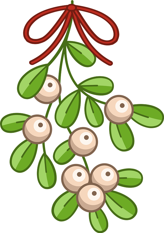 Mistletoe clipart transparent 4