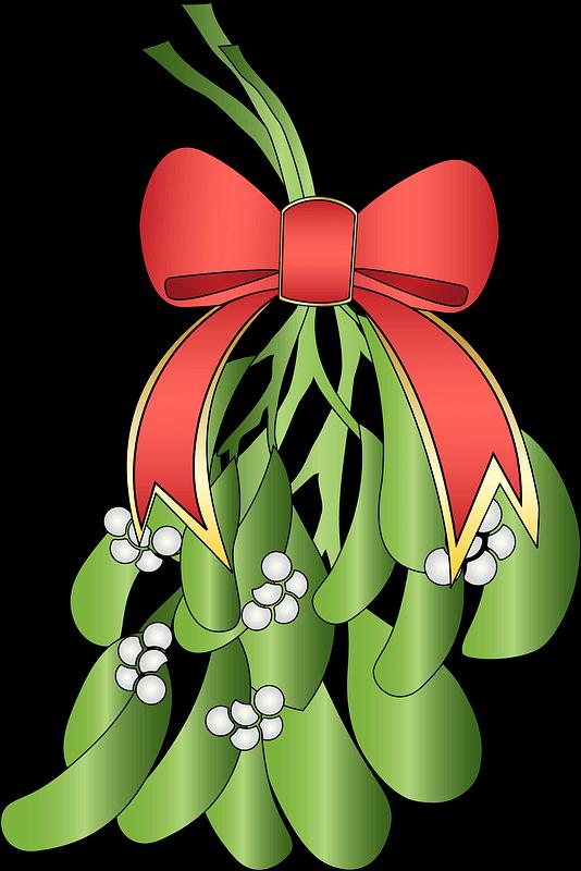 Mistletoe clipart transparent 7