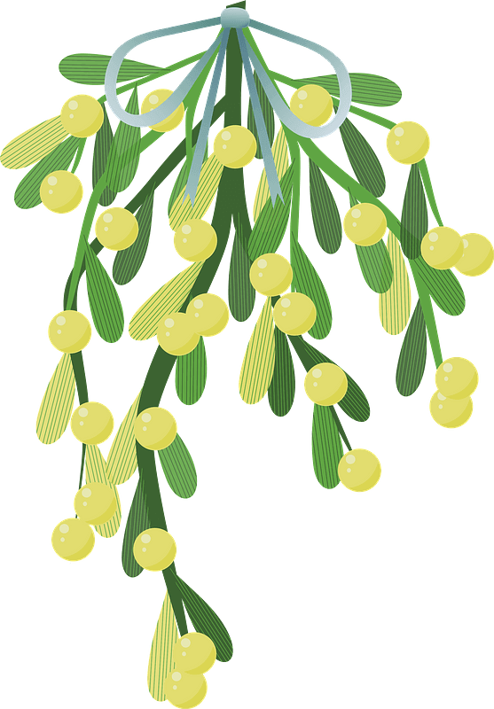 Mistletoe clipart transparent 8