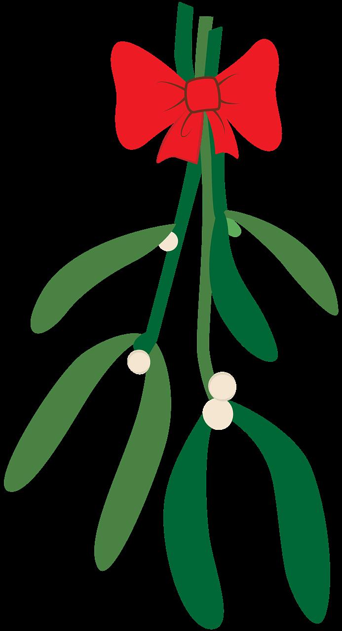 Mistletoe clipart transparent
