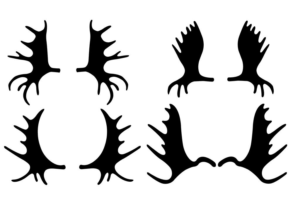 Moose Antlers clipart