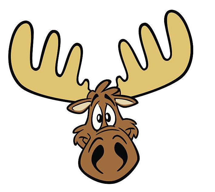 Moose Head clipart free