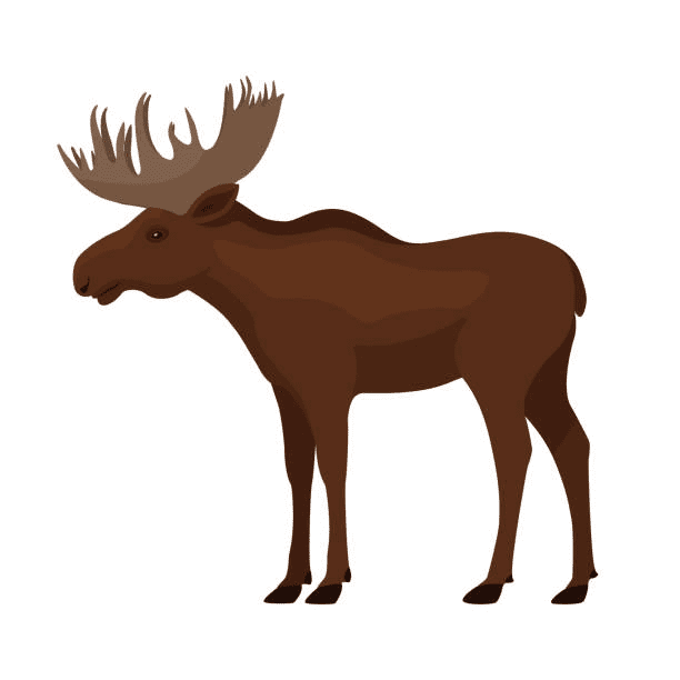 Moose clipart free 1