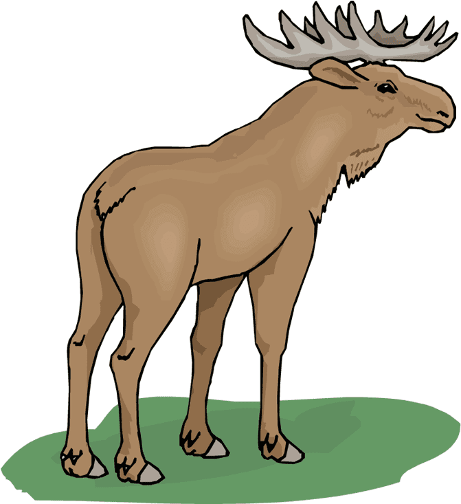 Moose clipart free 2