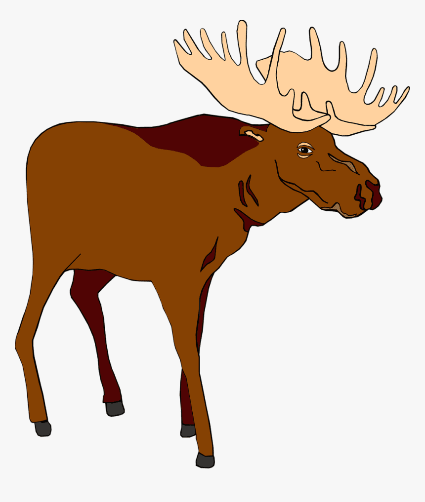 Moose clipart free 5