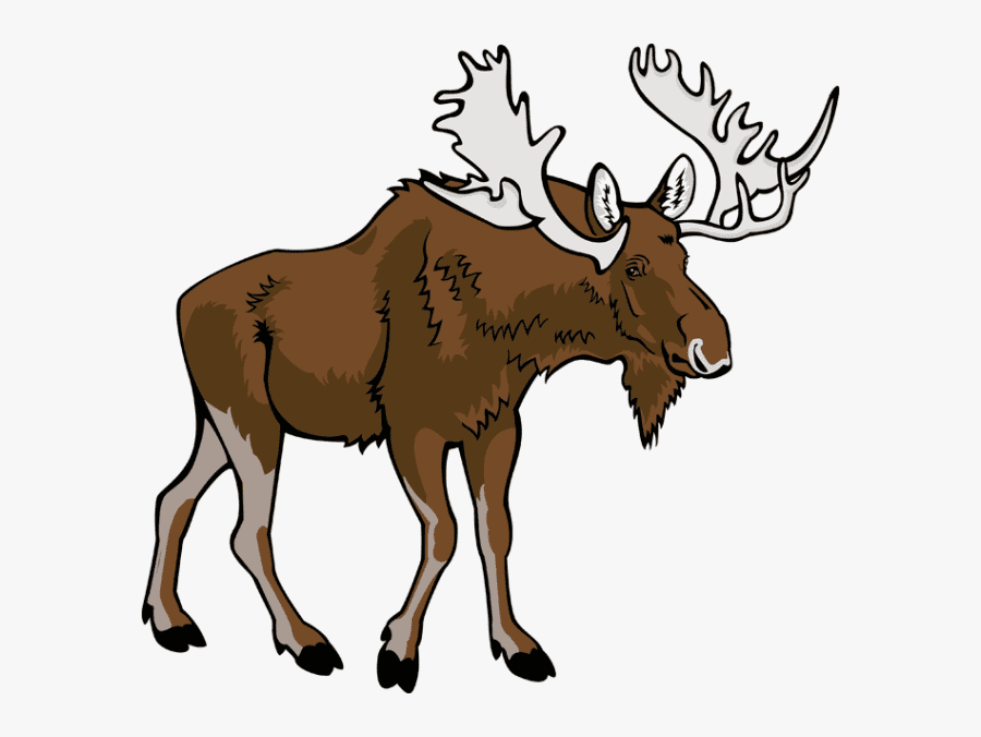 Moose clipart free 6