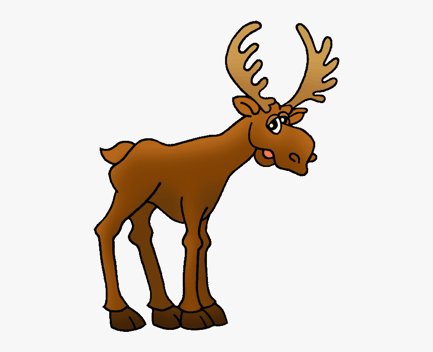 Moose clipart free images