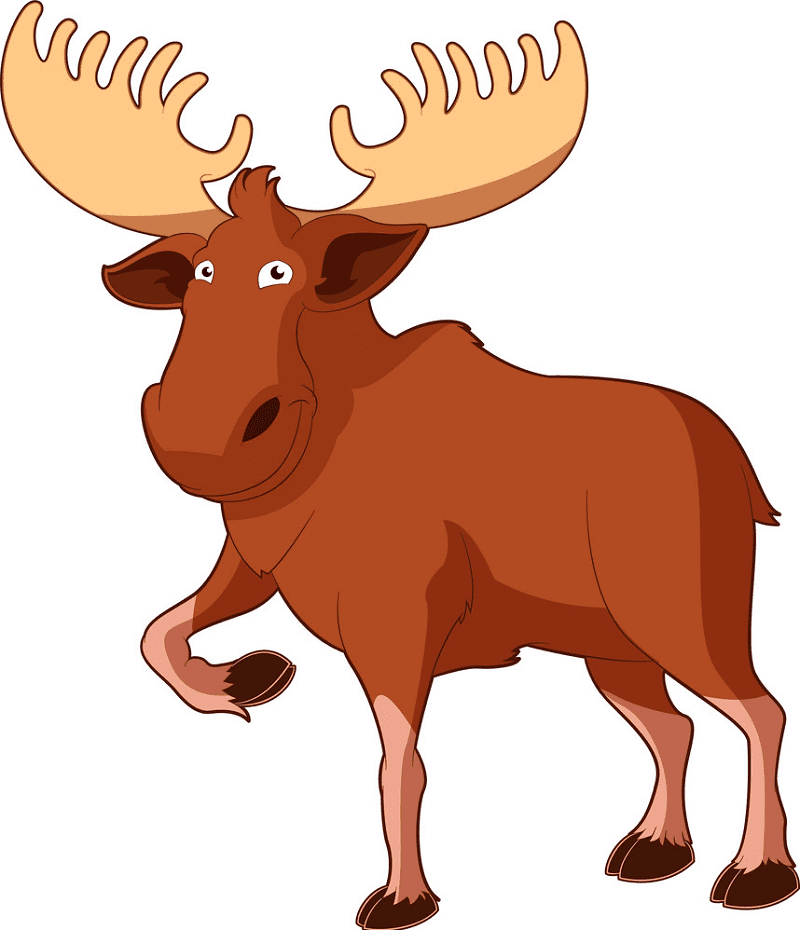 Moose clipart images