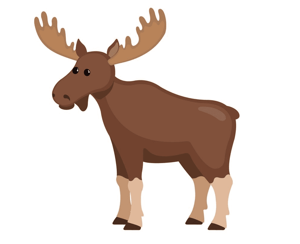 Moose clipart png images