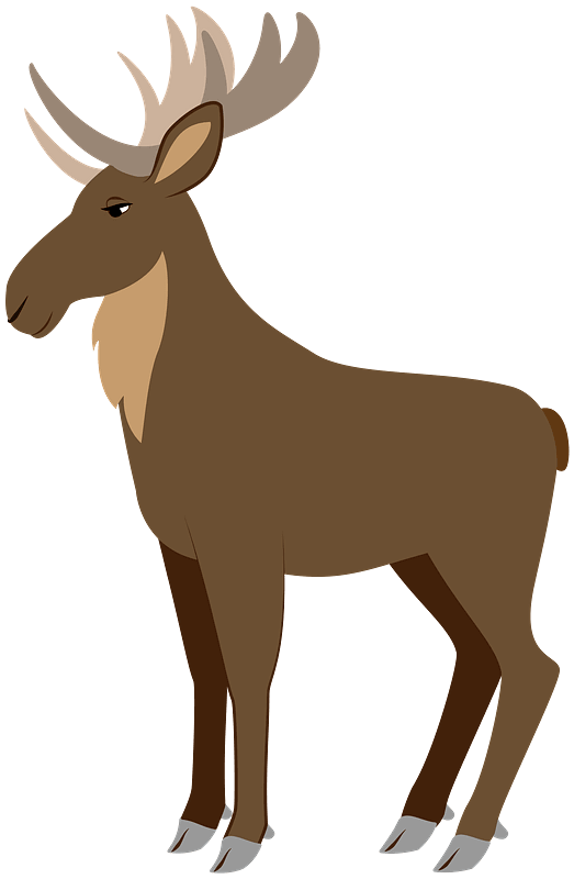 Moose clipart transparent 1