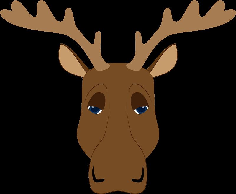 Moose clipart transparent 11