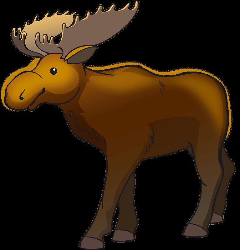 Moose clipart transparent 7
