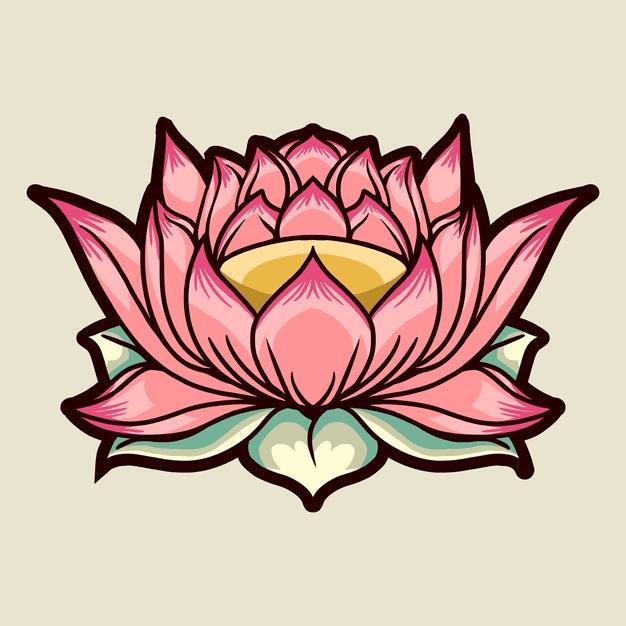 Pink Lotus clipart free image