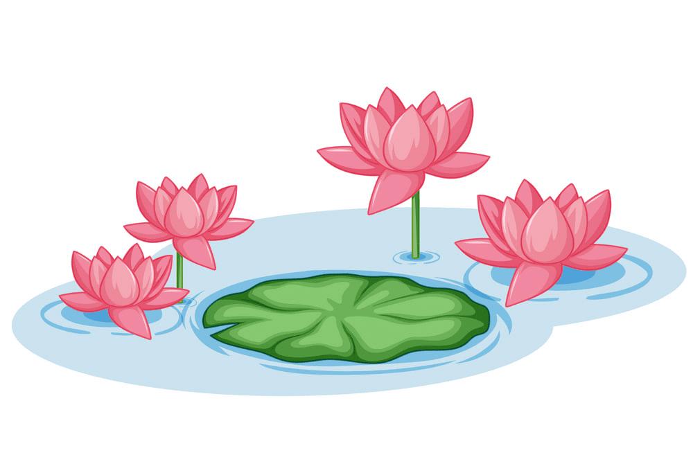 Pink Lotus clipart free