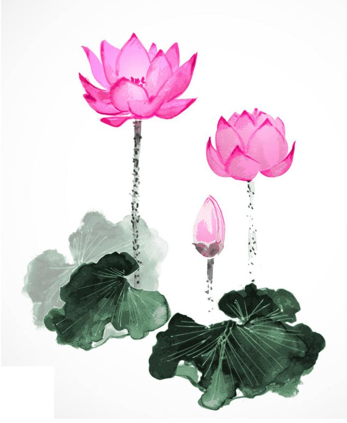 Pink Lotus clipart png free