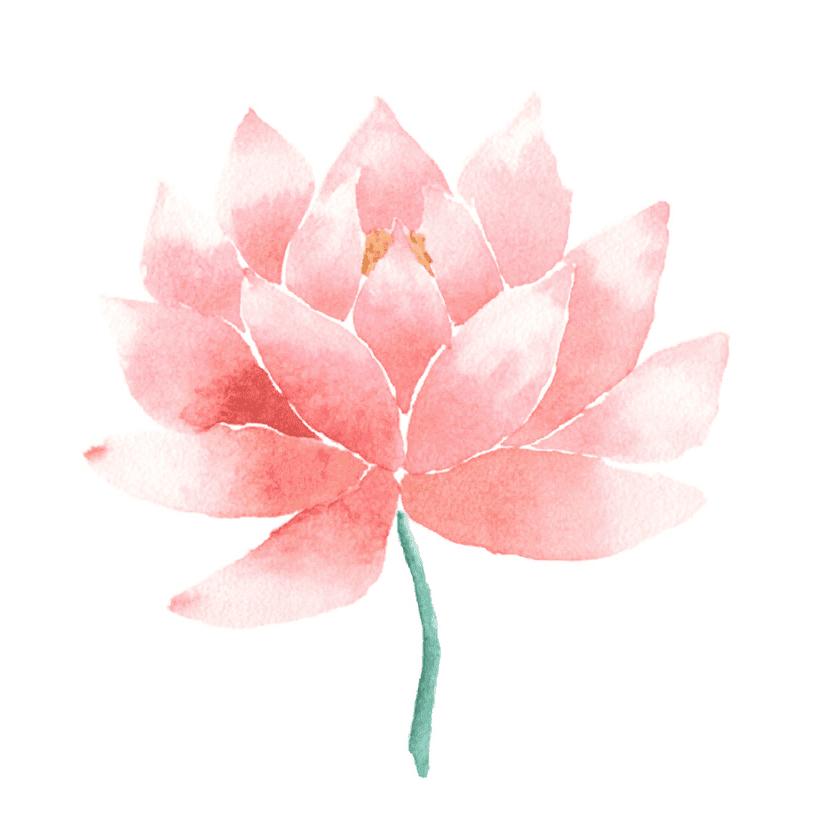 Pink Lotus clipart png image