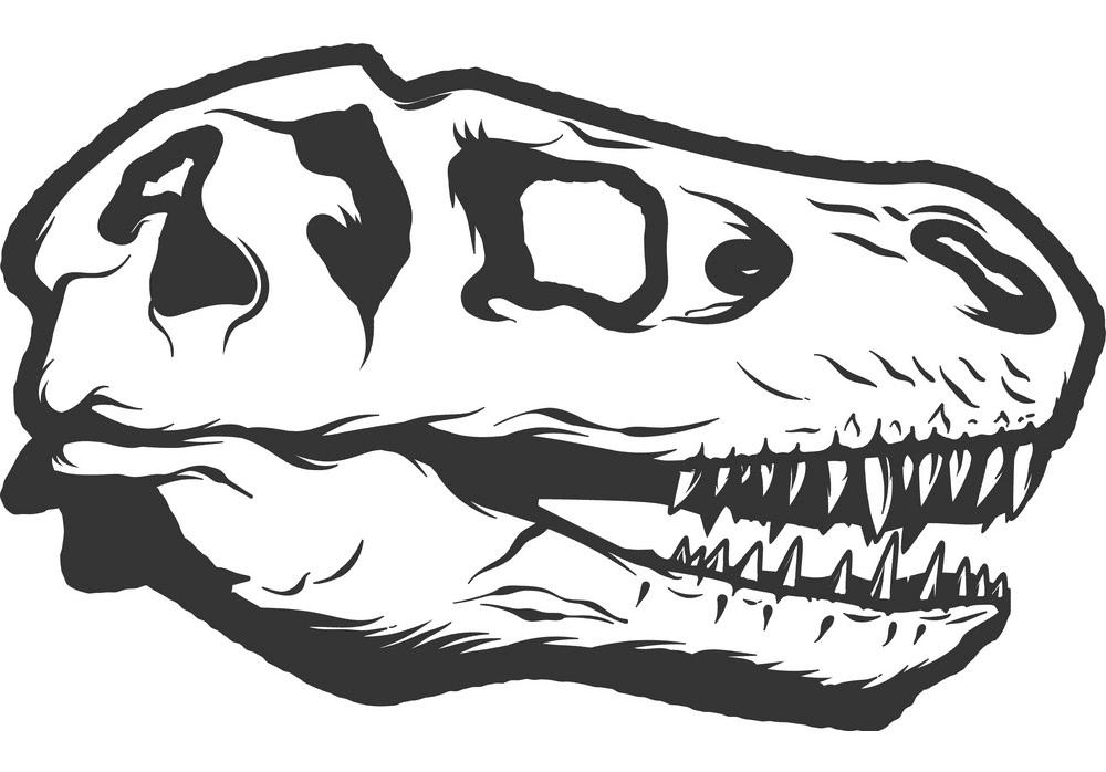 T-Rex Skull clipart images