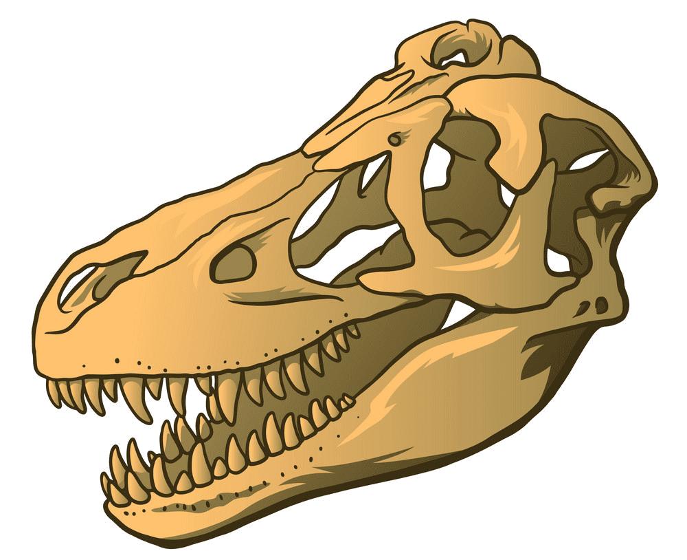 T-Rex Skull clipart png free