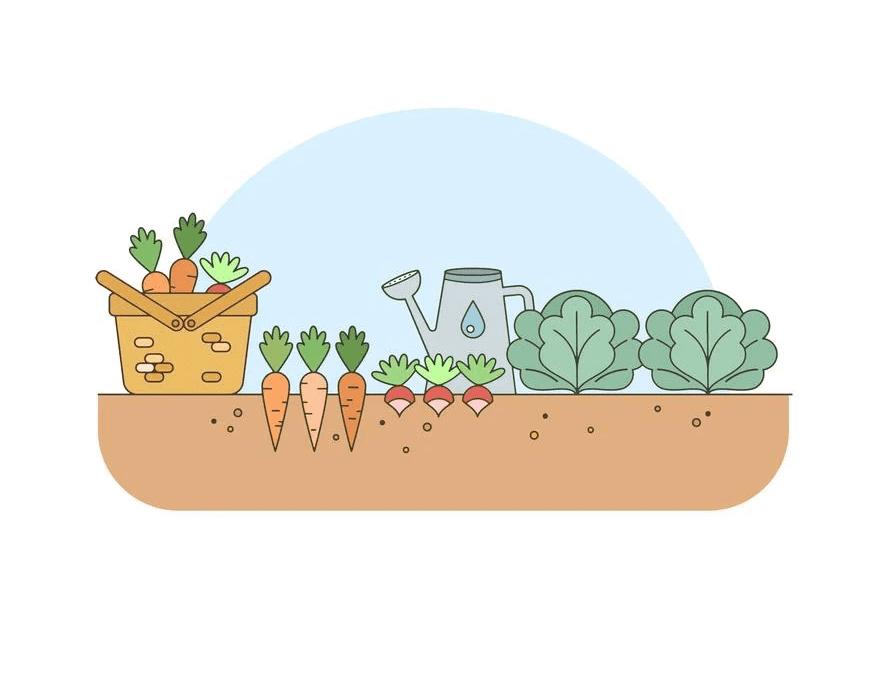 Vegetable Garden clipart free image