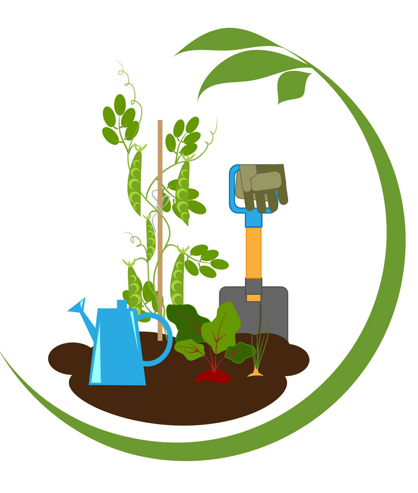 Vegetable Garden clipart png free