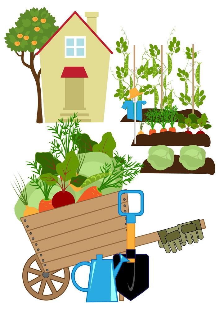 Vegetable Garden clipart png images