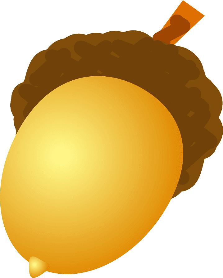 Acorn clipart 7