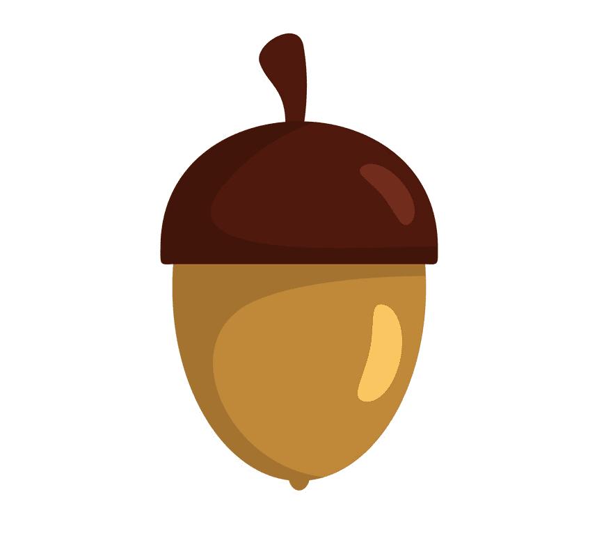 Acorn clipart 8