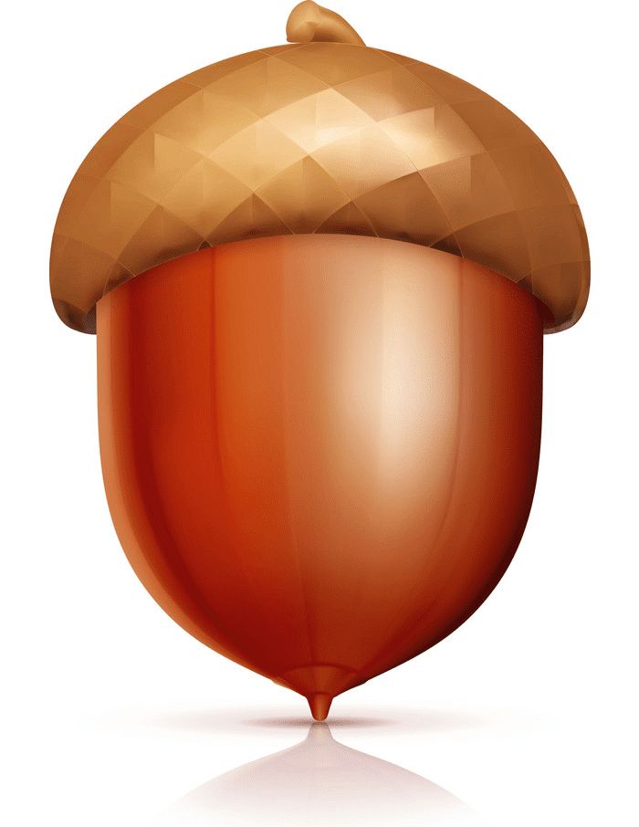 Acorn clipart for free
