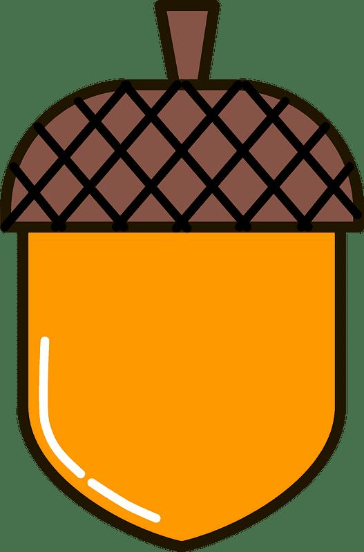 Acorn clipart transparent 14