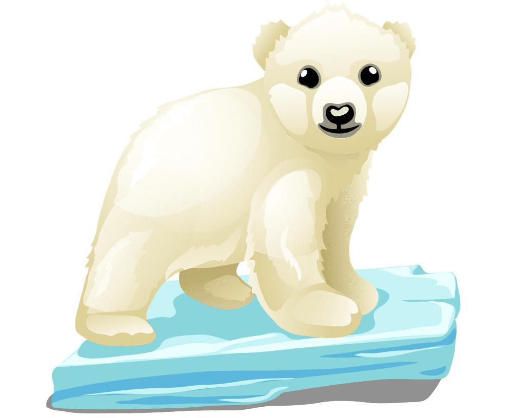 Baby Polar Bear clipart image