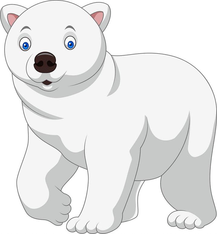 Baby Polar Bear clipart png free