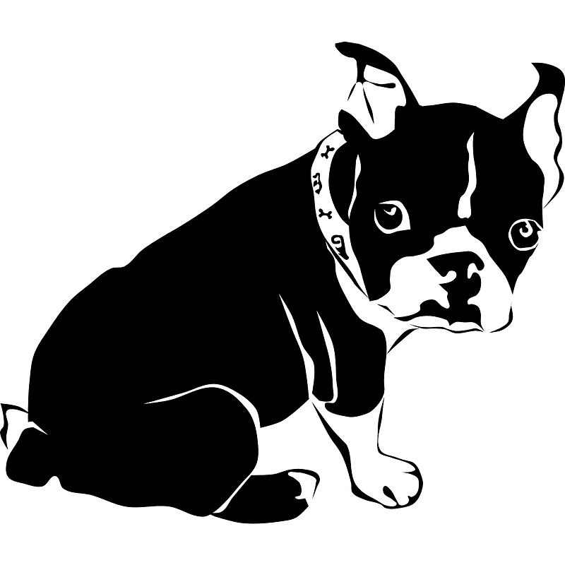 Bulldog Puppy clipart transparent