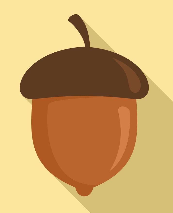 Clipart Acorn
