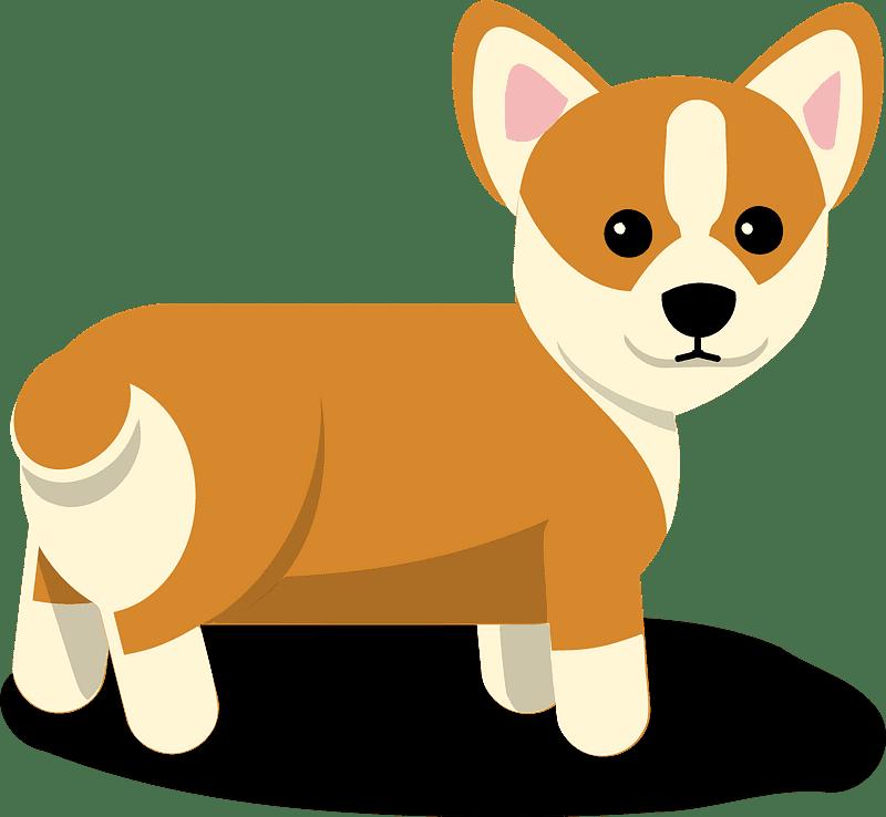 Corgi Puppy clipart transparent