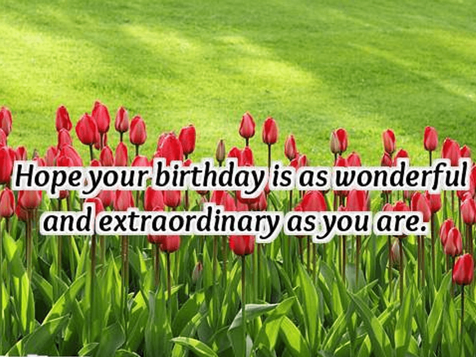 Happy Birthday Wishes png download